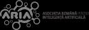 Romanian Association for Artificial Intelligence